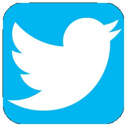 logo twitter en png